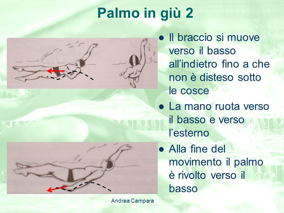 Palmo in giù 2 Il braccio si muove verso il basso all'indietro fino a che non è disteso sotto le cosce La mano ruota verso il basso e verso l'esterno