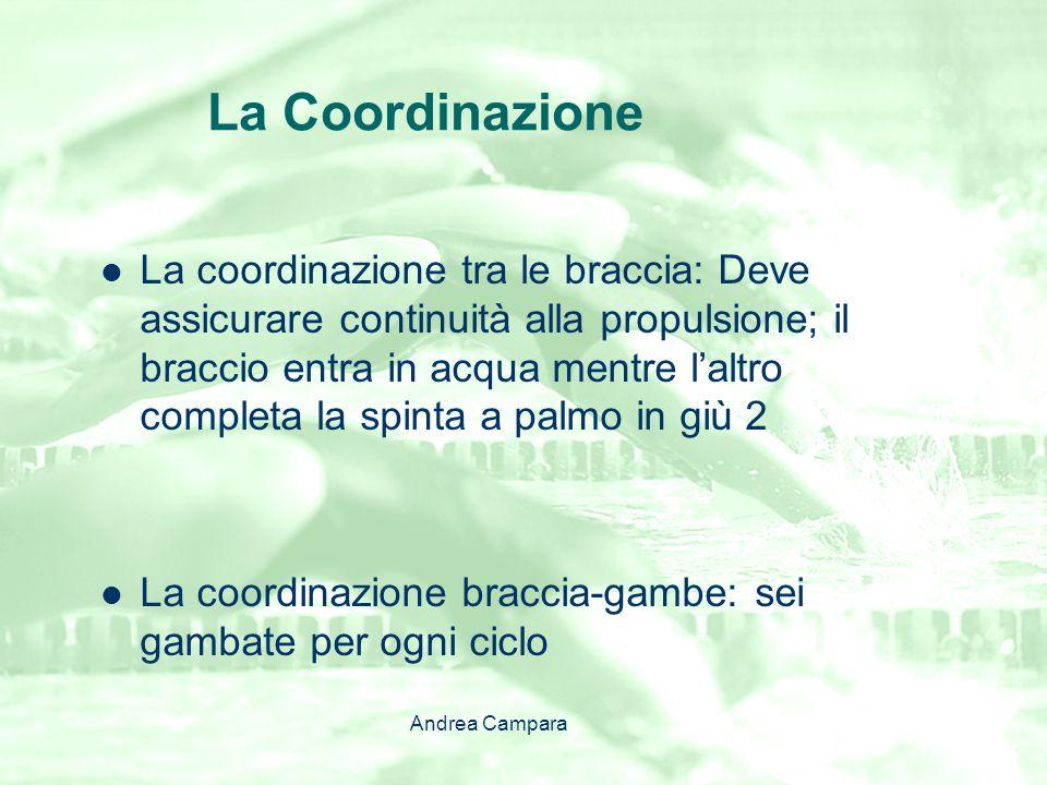 La Coordinazione La coordinazione tra le braccia: Deve assicurare continuità alla propulsione; il braccio entra in acqua mentre l'altro completa la sp