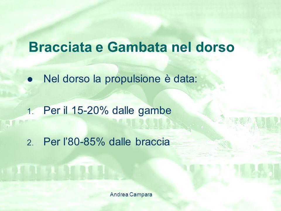 Bracciata e Gambata nel dorso Nel dorso la propulsione è data: 1. Per il 15-20% dalle gambe 2. Per l'80-85% dalle braccia Andrea Campara