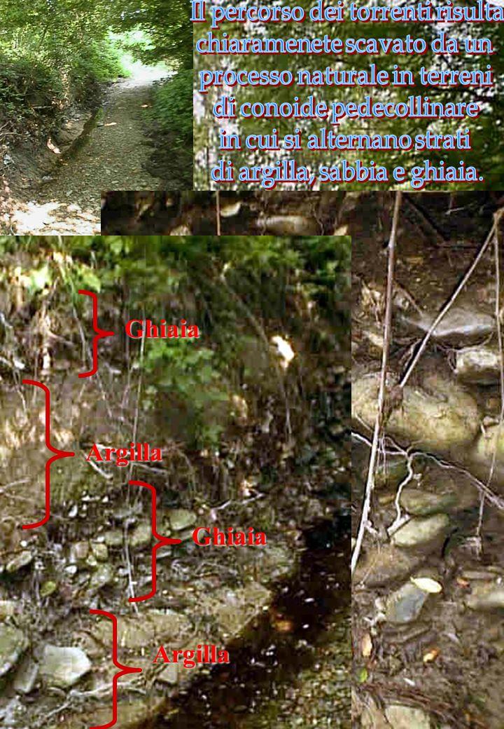 Valutazione della Qualità Ambientale Sulla base delle osservazioni effettuate si procede poi alla compilazione di schede descrittive rispondendo a que