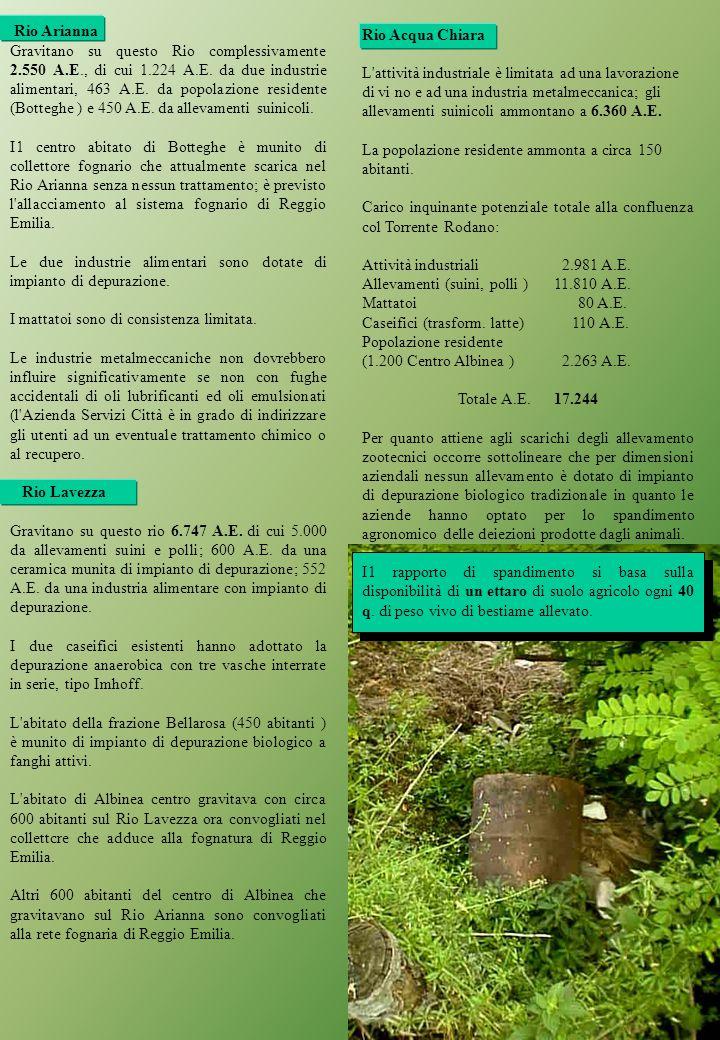 Rio Acqua Chiara L attività industriale è limitata ad una lavorazione di vi no e ad una industria metalmeccanica; gli allevamenti suinicoli ammontano a 6.360 A.E.