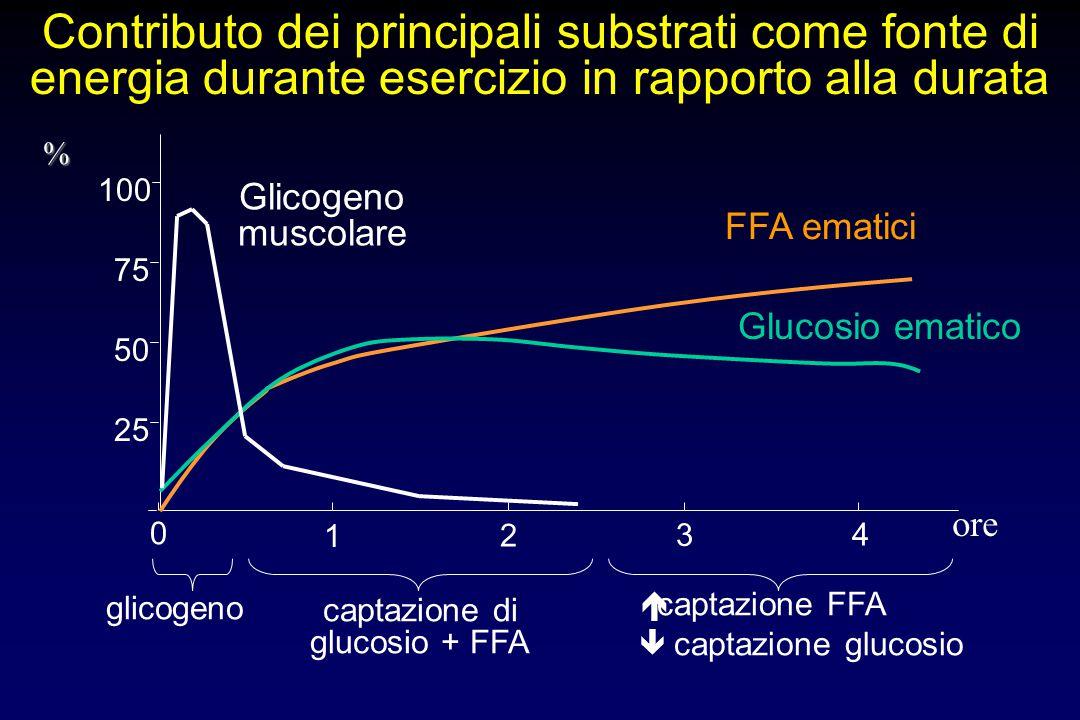 0 1 2 3 4 25 50 75 100 Glicogeno muscolare glicogeno FFA ematici captazione di glucosio + FFA Glucosio ematico   captazione FFA  captazione glucosi