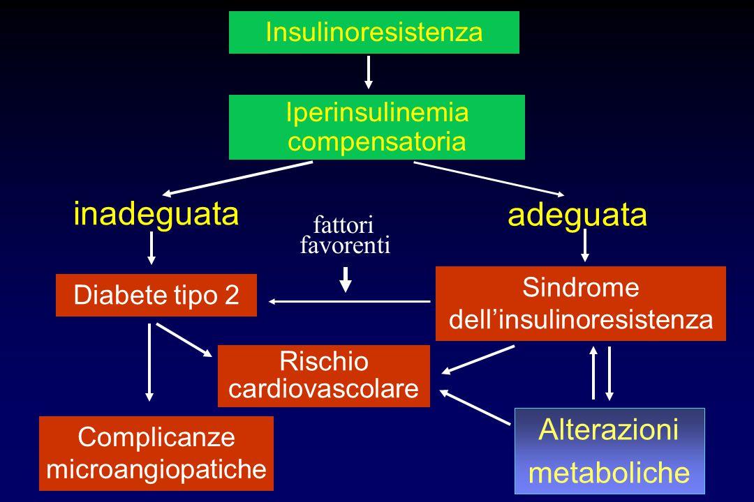 Insulinoresistenza Iperinsulinemia compensatoria adeguata Sindrome dell'insulinoresistenza Complicanze microangiopatiche inadeguata Diabete tipo 2 Ris