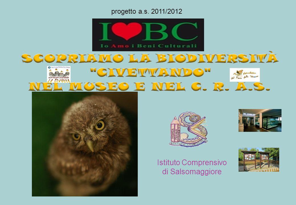 Istituto Comprensivo di Salsomaggiore progetto a.s. 2011/2012
