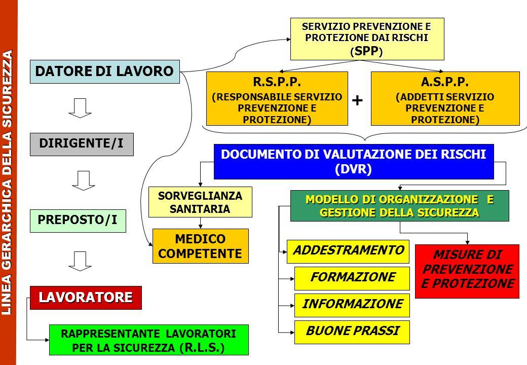 LAVORATORE DATORE DI LAVORO R.S.P.P. (RESPONSABILE SERVIZIO PREVENZIONE E PROTEZIONE) DOCUMENTO DI VALUTAZIONE DEI RISCHI (DVR) MEDICO COMPETENTE PREP