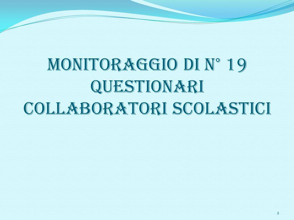 MONITORAGGIO DI N° 19 QUESTIONARI COLLABORATORI SCOLASTICI 2