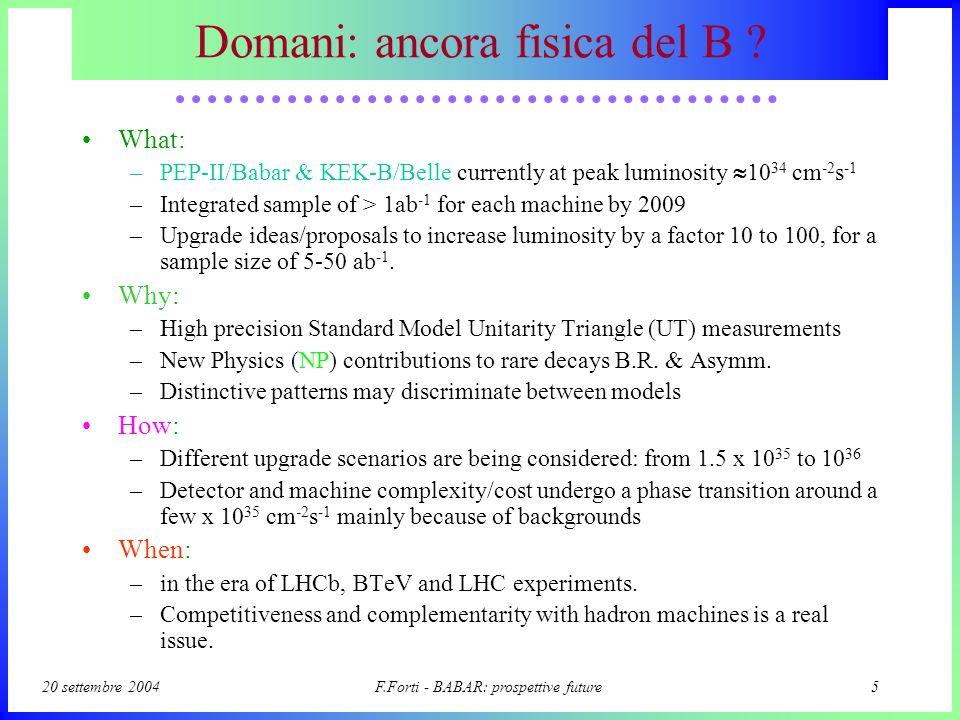 20 settembre 2004F.Forti - BABAR: prospettive future5 Domani: ancora fisica del B .