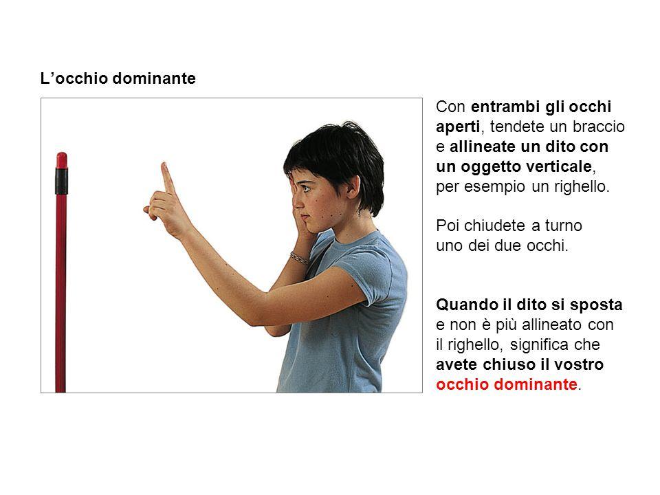 L'occhio dominante Con entrambi gli occhi aperti, tendete un braccio e allineate un dito con un oggetto verticale, per esempio un righello. Poi chiude