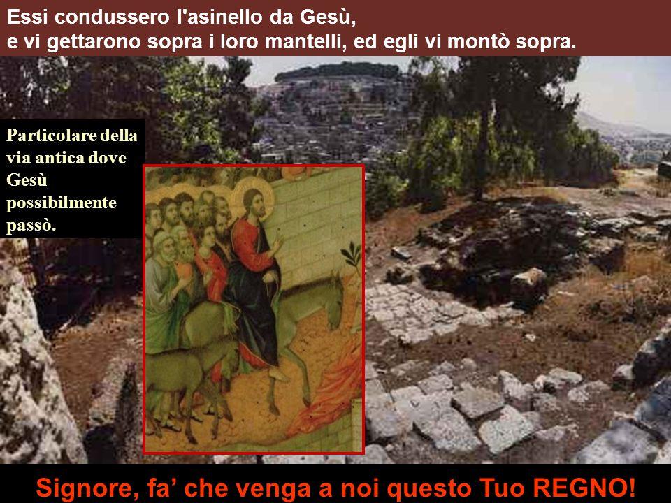 Particolare della via antica dove Gesù possibilmente passò.
