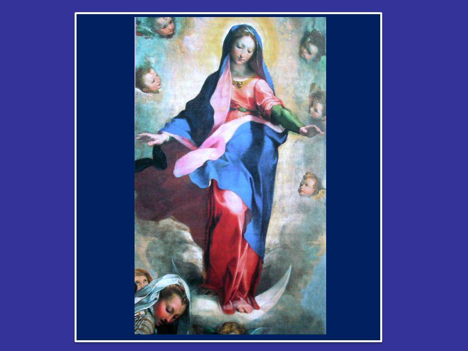 Cari amici, oggi pomeriggio rinnoverò il tradizionale omaggio alla Vergine Immacolata, presso il monumento a lei dedicato in Piazza di Spagna.