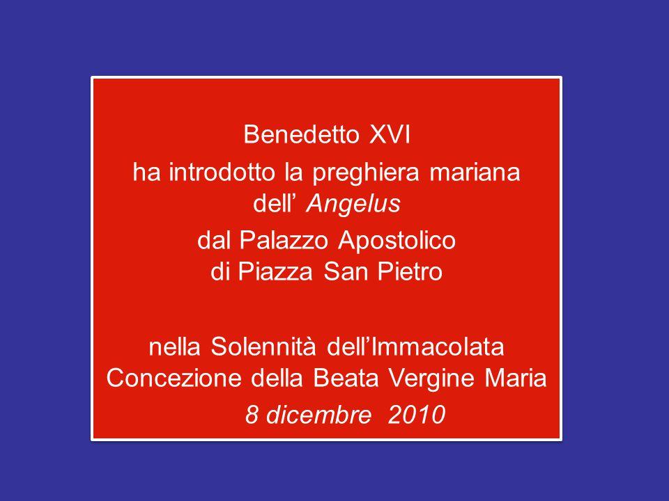 Benedetto XVI ha introdotto la preghiera mariana dell' Angelus dal Palazzo Apostolico di Piazza San Pietro nella Solennità dell'Immacolata Concezione della Beata Vergine Maria 8 dicembre 2010 Benedetto XVI ha introdotto la preghiera mariana dell' Angelus dal Palazzo Apostolico di Piazza San Pietro nella Solennità dell'Immacolata Concezione della Beata Vergine Maria 8 dicembre 2010
