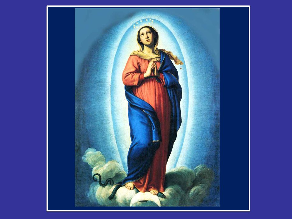 Questa espressione, che ci è tanto familiare fin dall'infanzia perché la pronunciamo ogni volta che recitiamo l' Ave Maria , ci offre la spiegazione del mistero che oggi celebriamo.
