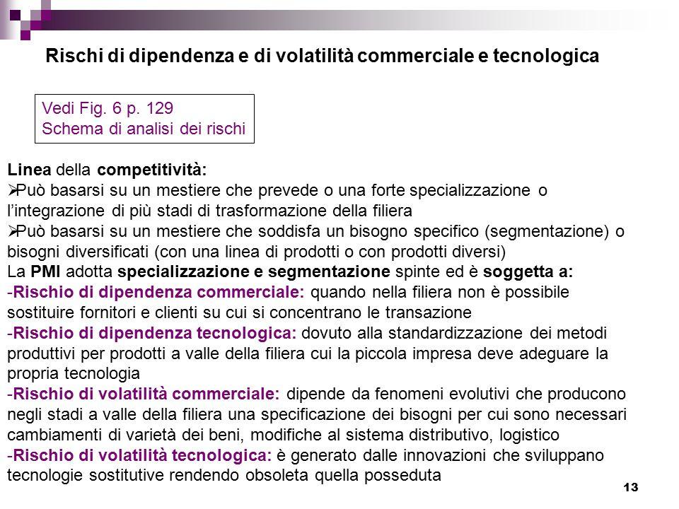 13 Rischi di dipendenza e di volatilità commerciale e tecnologica Vedi Fig.