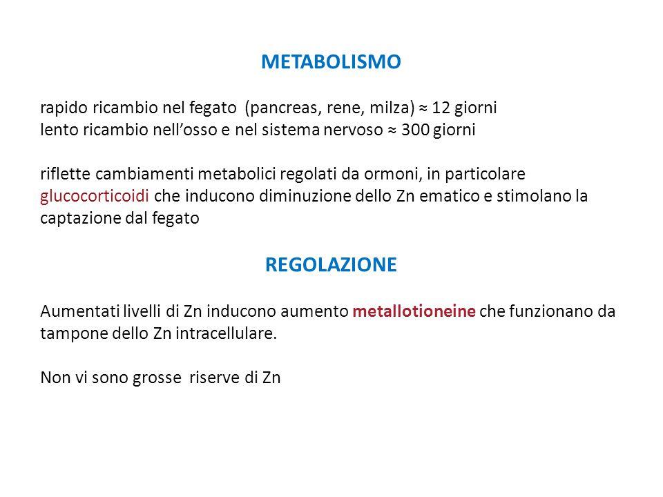 METABOLISMO rapido ricambio nel fegato (pancreas, rene, milza) ≈ 12 giorni lento ricambio nell'osso e nel sistema nervoso ≈ 300 giorni riflette cambia