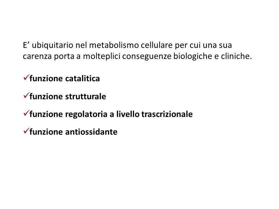 Altre cause di carenza di Zn nutrizione parenterale prolungata malassorbimento, colite, morbo di Crohn gastrite atrofica nell'anziano alcolismo (soprattutto se con cirrosi epatica) malattia renale (perdita di Zn legato alla albumina), dialisi, trattamento con diuretici ustioni