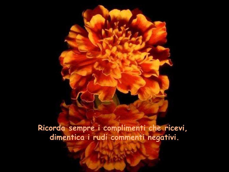 Ricorda sempre i complimenti che ricevi, dimentica i rudi commenti negativi.