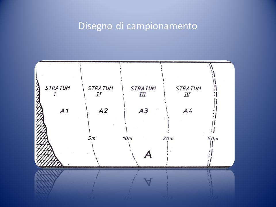 Disegno di campionamento