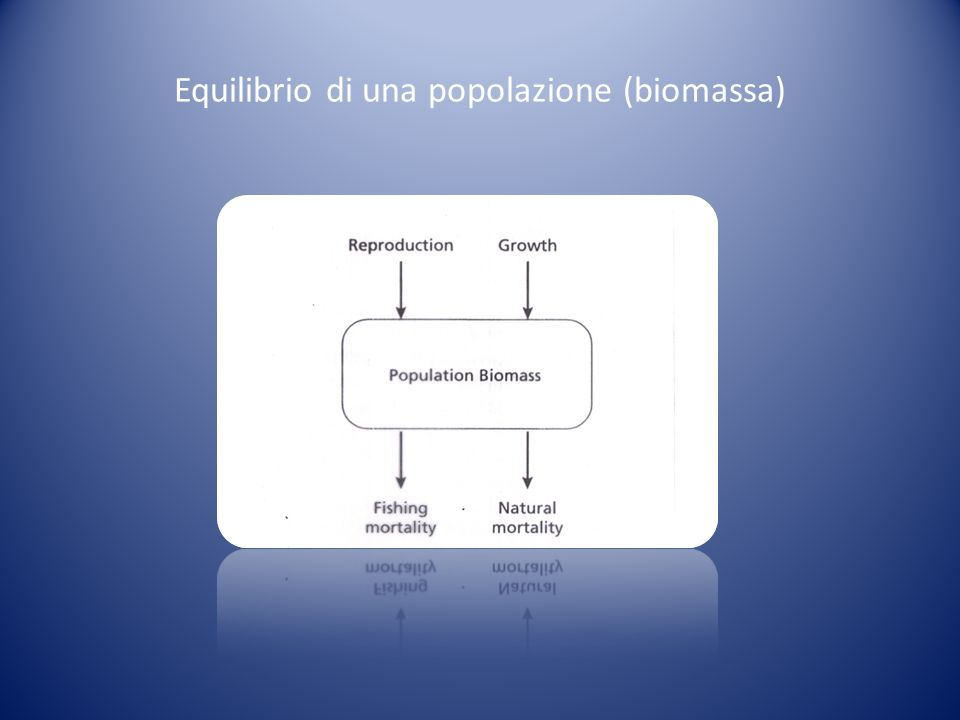 Equilibrio di una popolazione (biomassa)