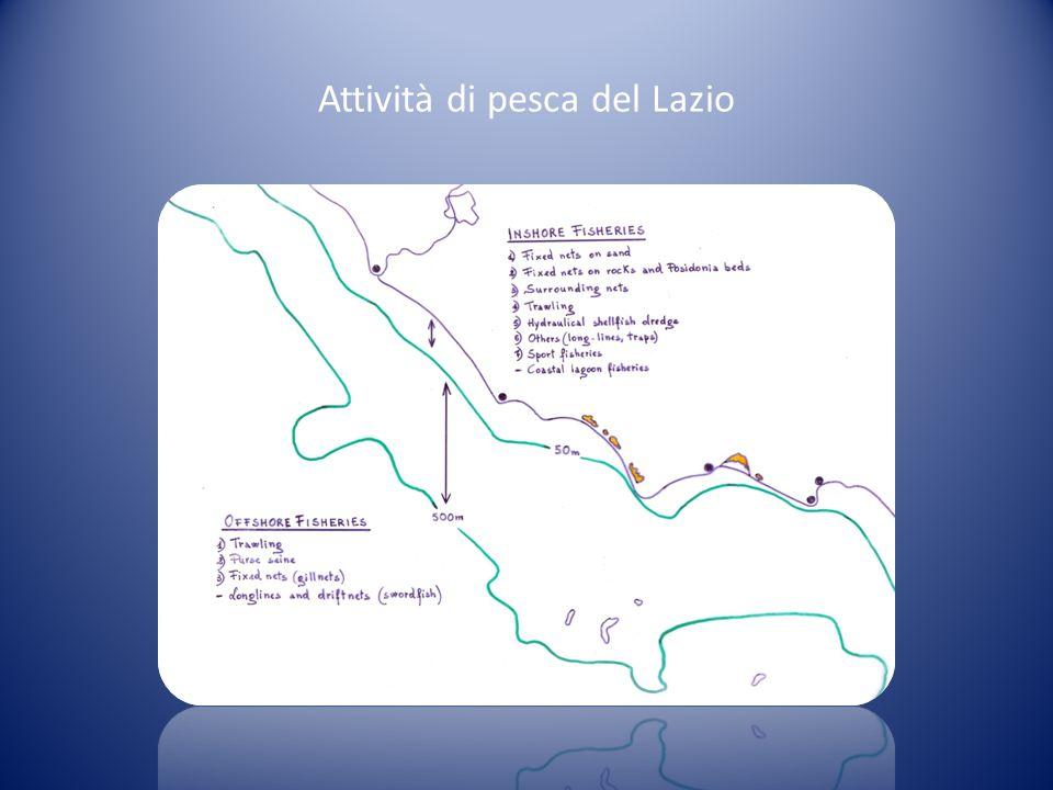 Attività di pesca del Lazio