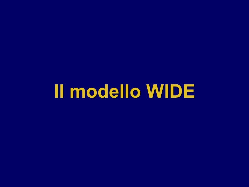 Il modello WIDE