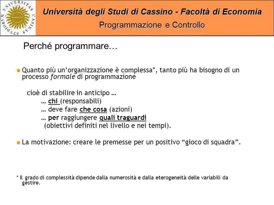 Università degli Studi di Cassino - Facoltà di Economia Programmazione e Controllo Quanto più un'organizzazione presenta gradi elevati di rigidità*, tanto più ha bisogno di un processo di programmazione orientato su tempi medio- lunghi.