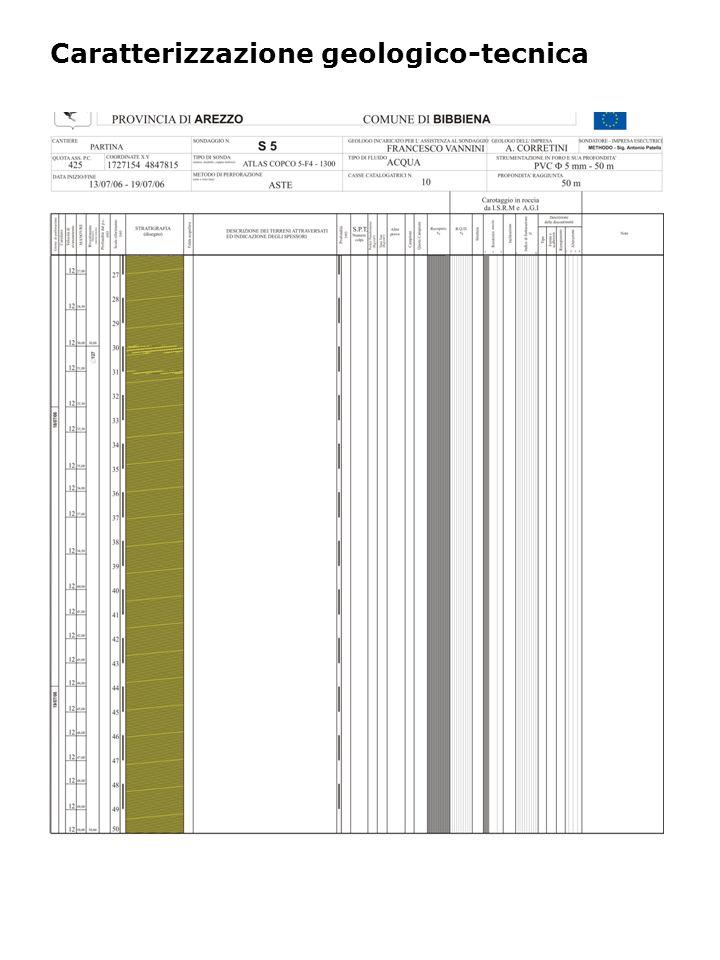 Indagini geofisiche DH: profili Vs e Vp