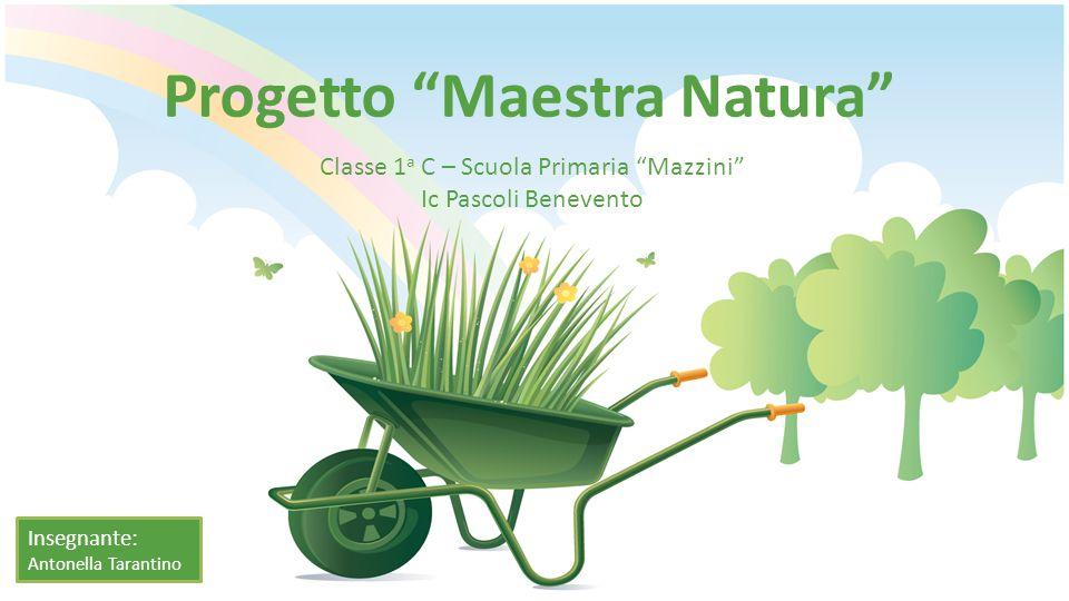 Progetto Maestra Natura Classe 1 a C – Scuola Primaria Mazzini Ic Pascoli Benevento Insegnante: Antonella Tarantino