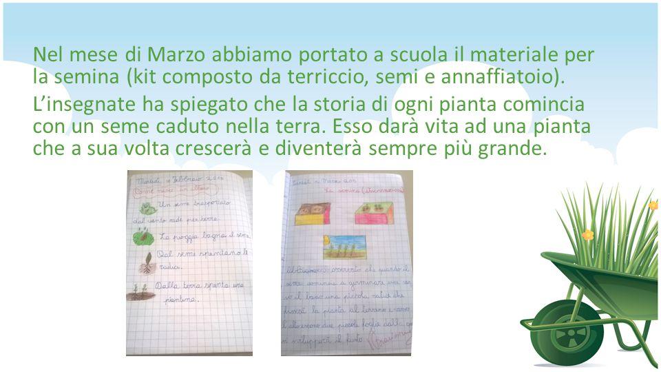 Nel mese di Marzo abbiamo portato a scuola il materiale per la semina (kit composto da terriccio, semi e annaffiatoio).