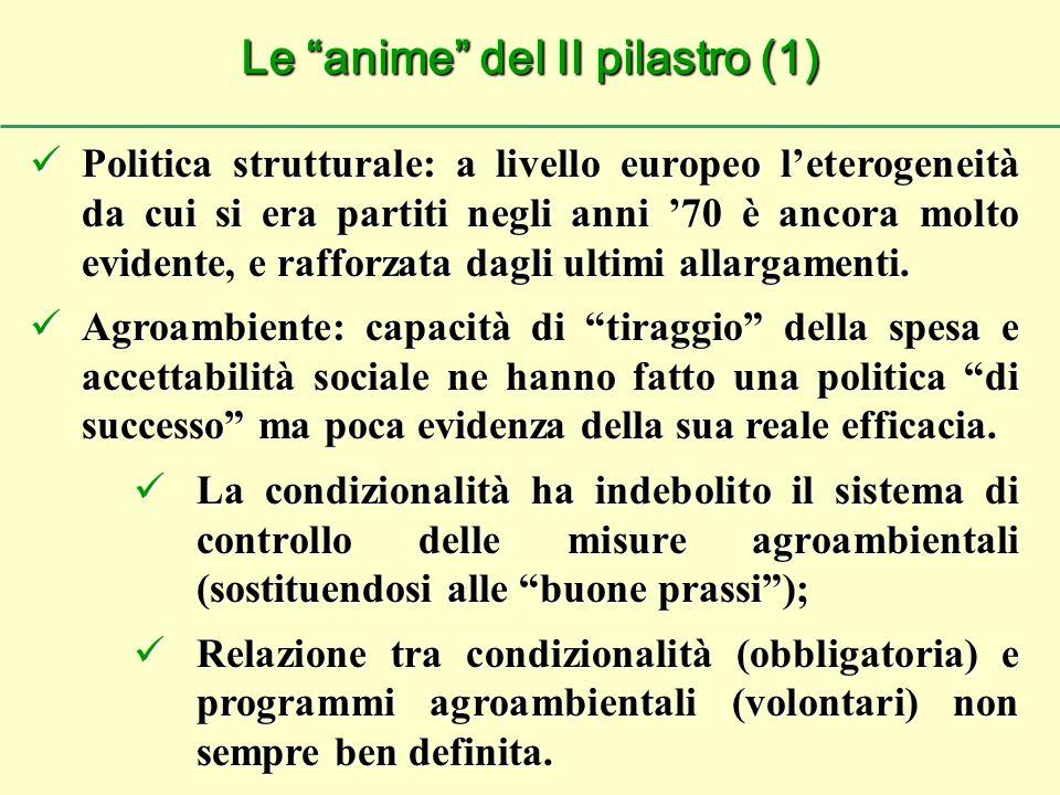 Politica strutturale: a livello europeo l'eterogeneità da cui si era partiti negli anni '70 è ancora molto evidente, e rafforzata dagli ultimi allargamenti.