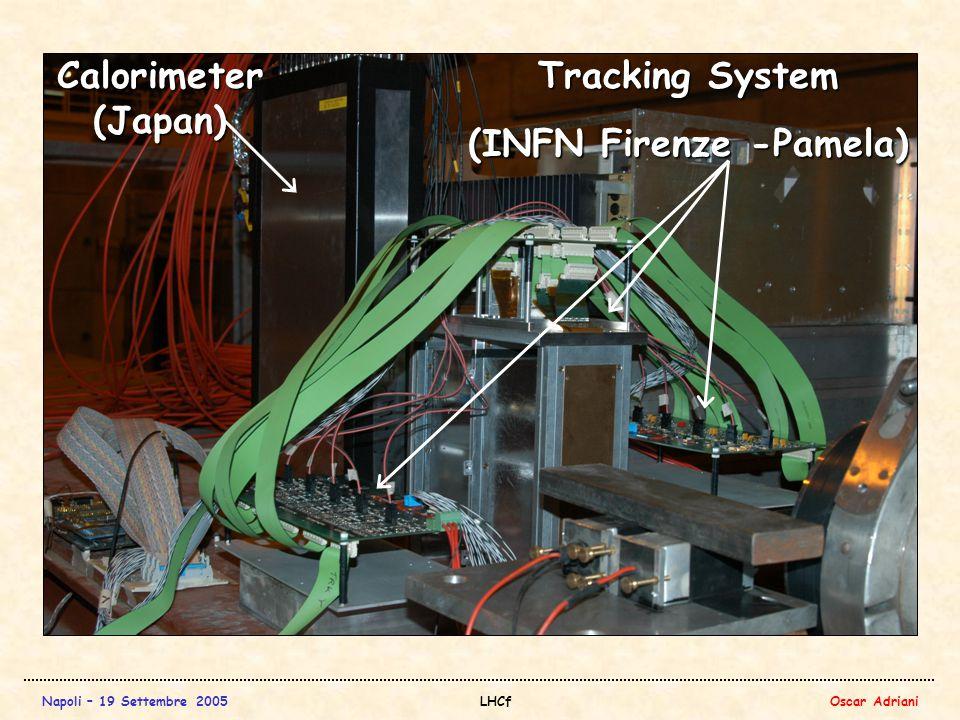 Napoli – 19 Settembre 2005LHCfOscar Adriani Tracking System (INFN Firenze -Pamela) Calorimeter (Japan)