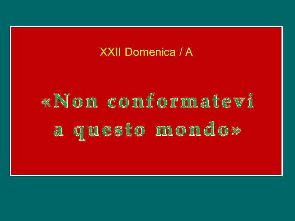 XXII Domenica / A