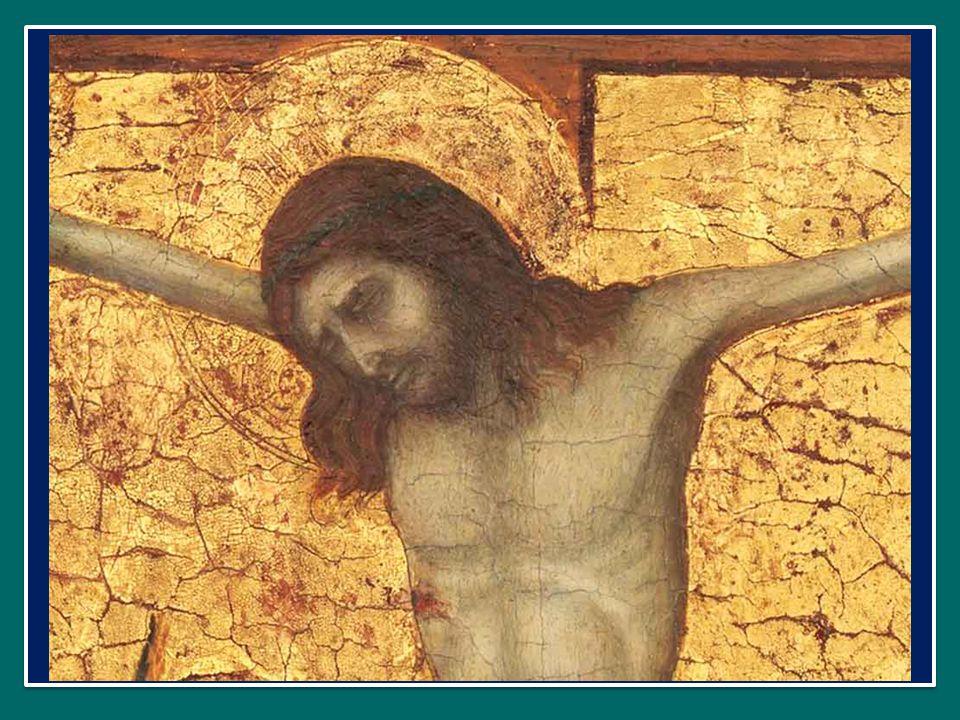 Perciò è necessario rinnovarsi continuamente attingendo la linfa dal Vangelo.