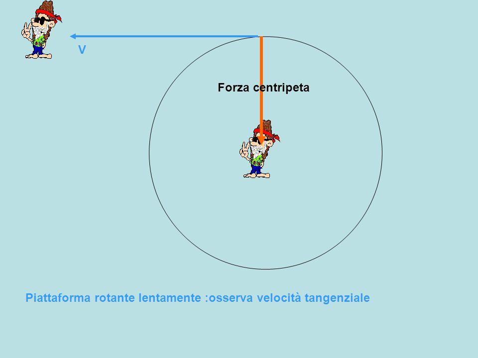 V Forza centripeta Piattaforma rotante lentamente :osserva velocità tangenziale