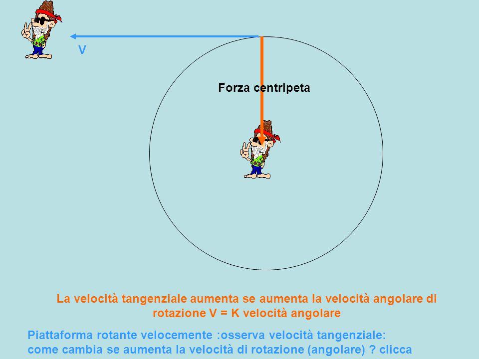 V Forza centripeta Piattaforma rotante velocemente :osserva velocità tangenziale: come cambia se aumenta la velocità di rotazione (angolare) .