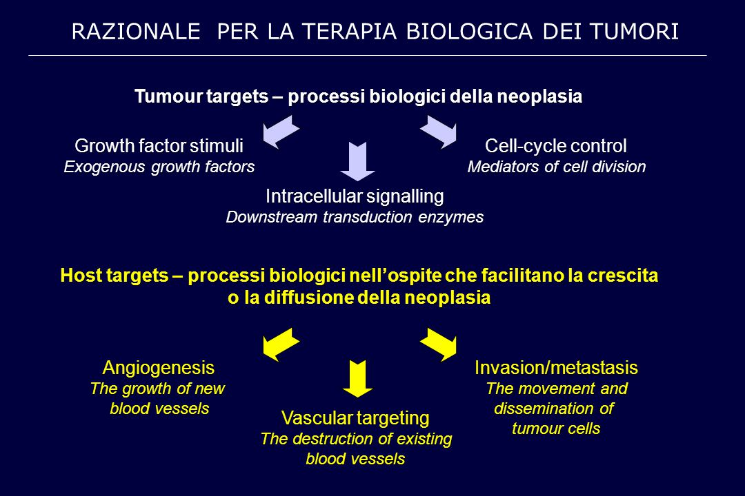 Tumour targets – processi biologici della neoplasia Growth factor stimuli Exogenous growth factors Intracellular signalling Downstream transduction en