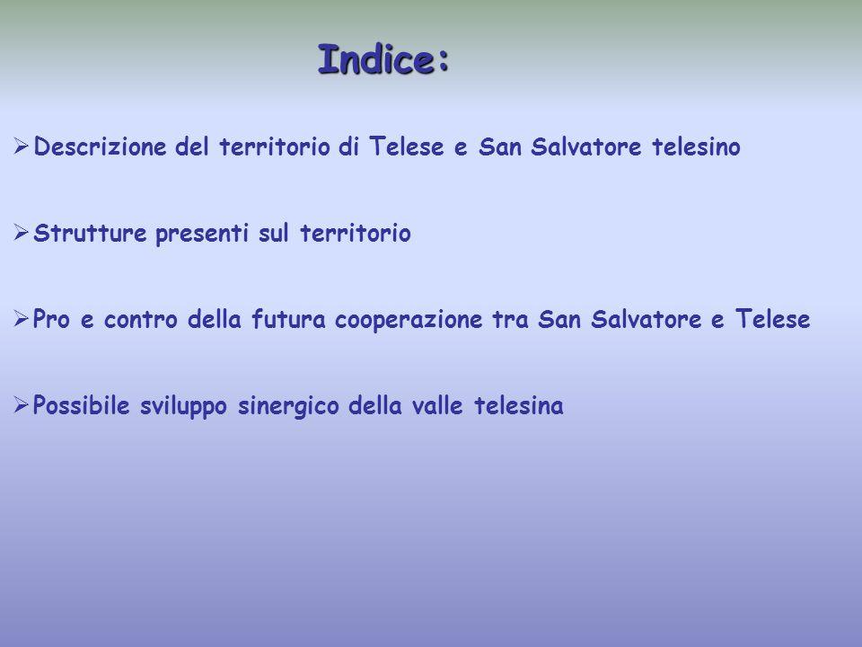 Indice:   Descrizione del territorio di Telese e San Salvatore telesino   Strutture presenti sul territorio   Pro e contro della futura cooperazione tra San Salvatore e Telese   Possibile sviluppo sinergico della valle telesina