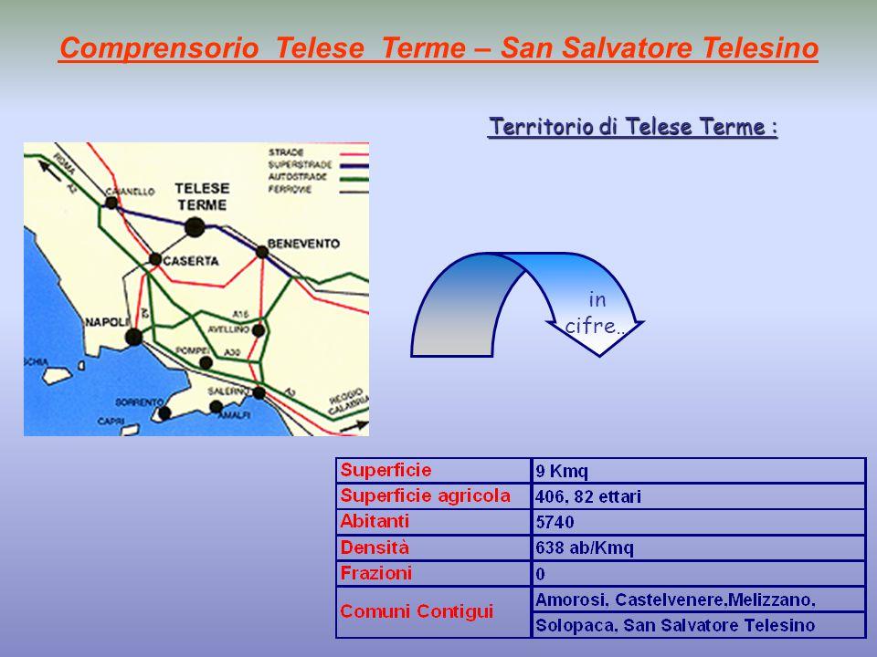 Comprensorio Telese Terme – San Salvatore Telesino Territorio di Telese Terme : in cifre…