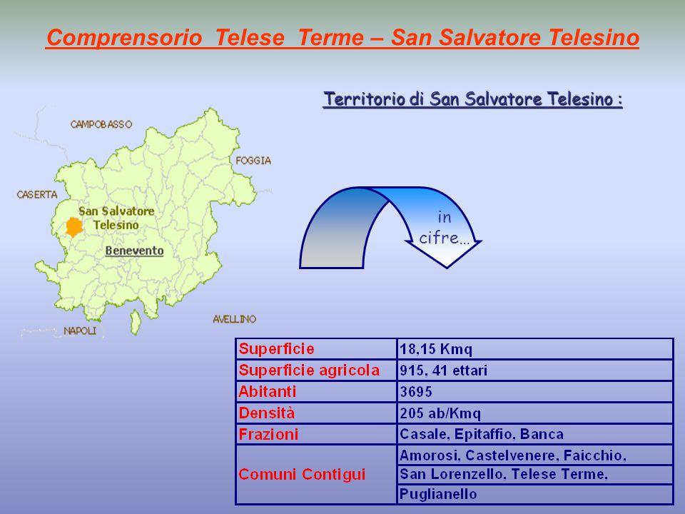 Comprensorio Telese Terme – San Salvatore Telesino Territorio di San Salvatore Telesino : in cifre…