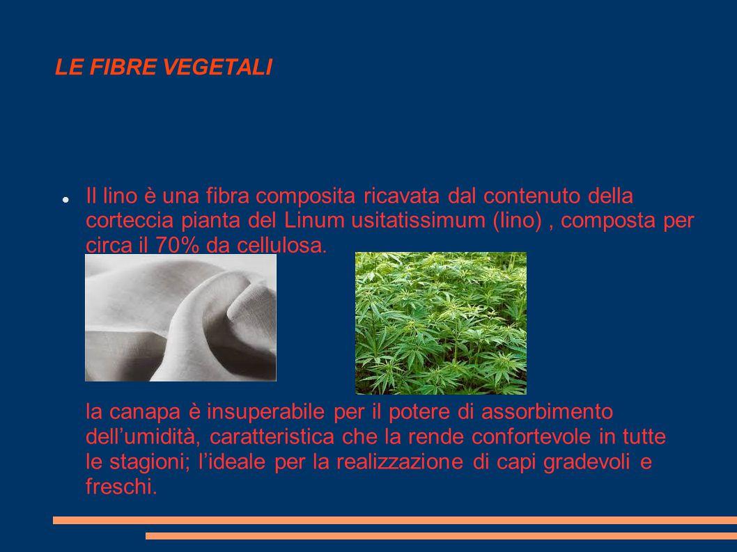 LE FIBRE VEGETALI Il lino è una fibra composita ricavata dal contenuto della corteccia pianta del Linum usitatissimum (lino), composta per circa il 70