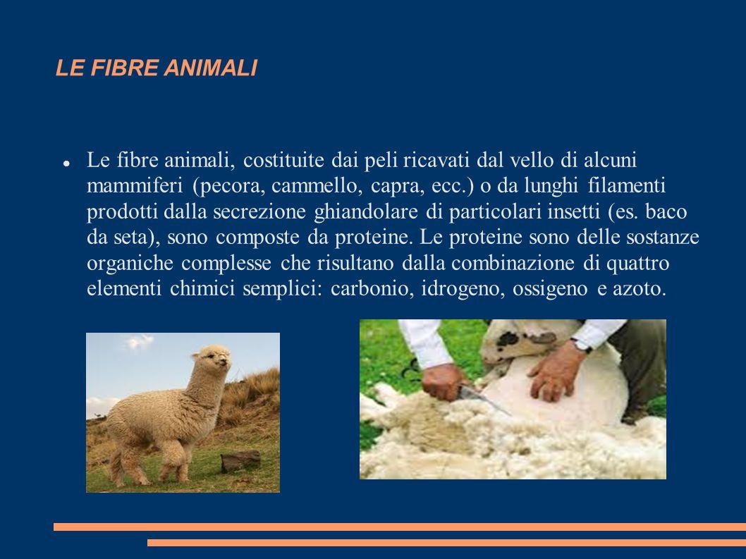 LE FIBRE ANIMALI Le fibre animali, costituite dai peli ricavati dal vello di alcuni mammiferi (pecora, cammello, capra, ecc.) o da lunghi filamenti pr