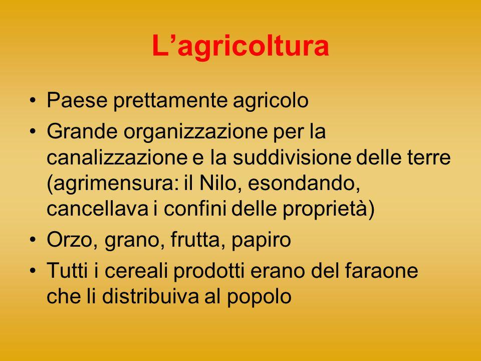 L'agricoltura Paese prettamente agricolo Grande organizzazione per la canalizzazione e la suddivisione delle terre (agrimensura: il Nilo, esondando, c