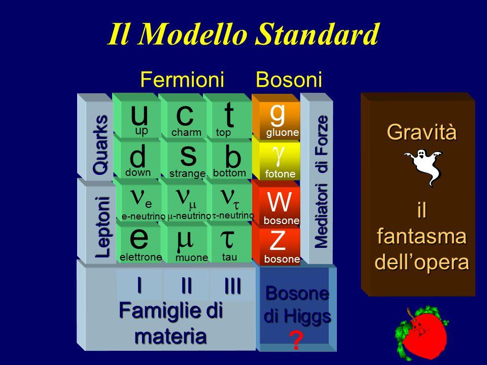 3 Bosone di Higgs Mediatori di Forze Z bosone W  fotone g gluone Famiglie di materia Famiglie di materia  tau   -neutrino b bottom t top III  muo