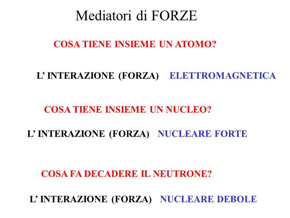 COSA TIENE INSIEME UN NUCLEO? L' INTERAZIONE (FORZA)NUCLEARE FORTE COSA FA DECADERE IL NEUTRONE? L' INTERAZIONE (FORZA)NUCLEARE DEBOLE COSA TIENE INSI