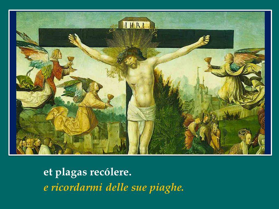 Papa Francesco La Via Crucis sintesi della vita di Gersù Dopo la Via Crucis al Colosseo 3 aprile 2015 Papa Francesco La Via Crucis sintesi della vita di Gersù Dopo la Via Crucis al Colosseo 3 aprile 2015