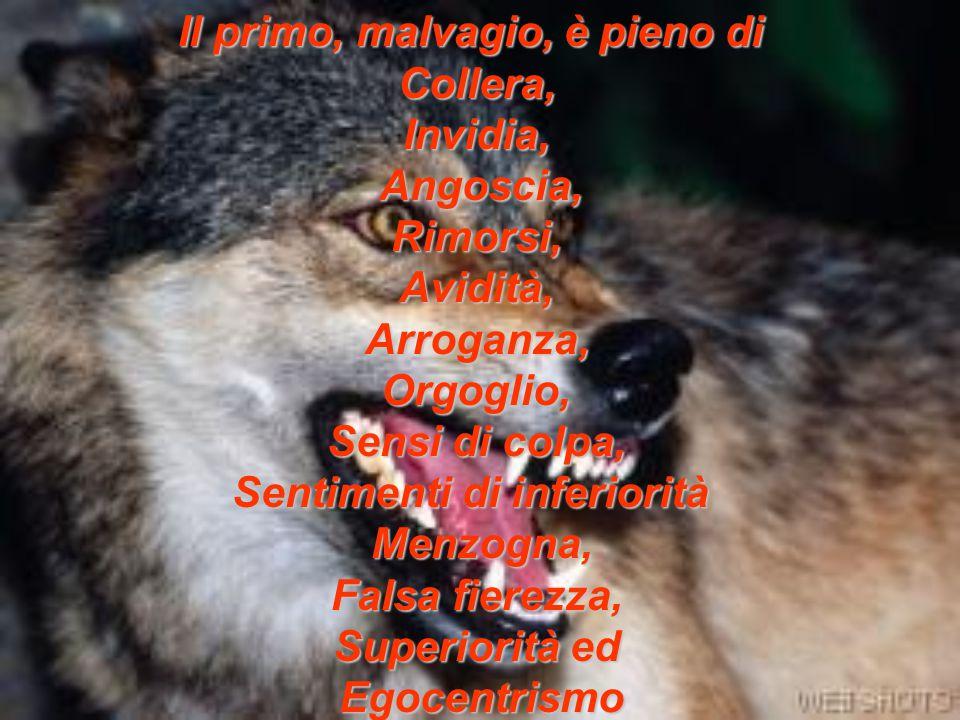 Il primo, malvagio, è pieno di Collera, Invidia, Angoscia, Rimorsi, Avidità, Arroganza, Orgoglio, Sensi di colpa, Sentimenti di inferiorità Menzogna, Falsa fierezza, Superiorità ed Egocentrismo