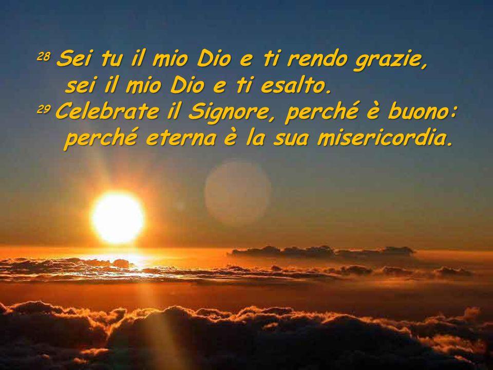 28 Sei tu il mio Dio e ti rendo grazie, sei il mio Dio e ti esalto. sei il mio Dio e ti esalto. 29 Celebrate il Signore, perché è buono: perché eterna