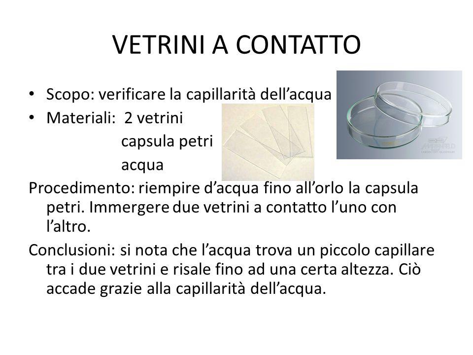 VETRINI A CONTATTO Scopo: verificare la capillarità dell'acqua Materiali: 2 vetrini capsula petri acqua Procedimento: riempire d'acqua fino all'orlo l