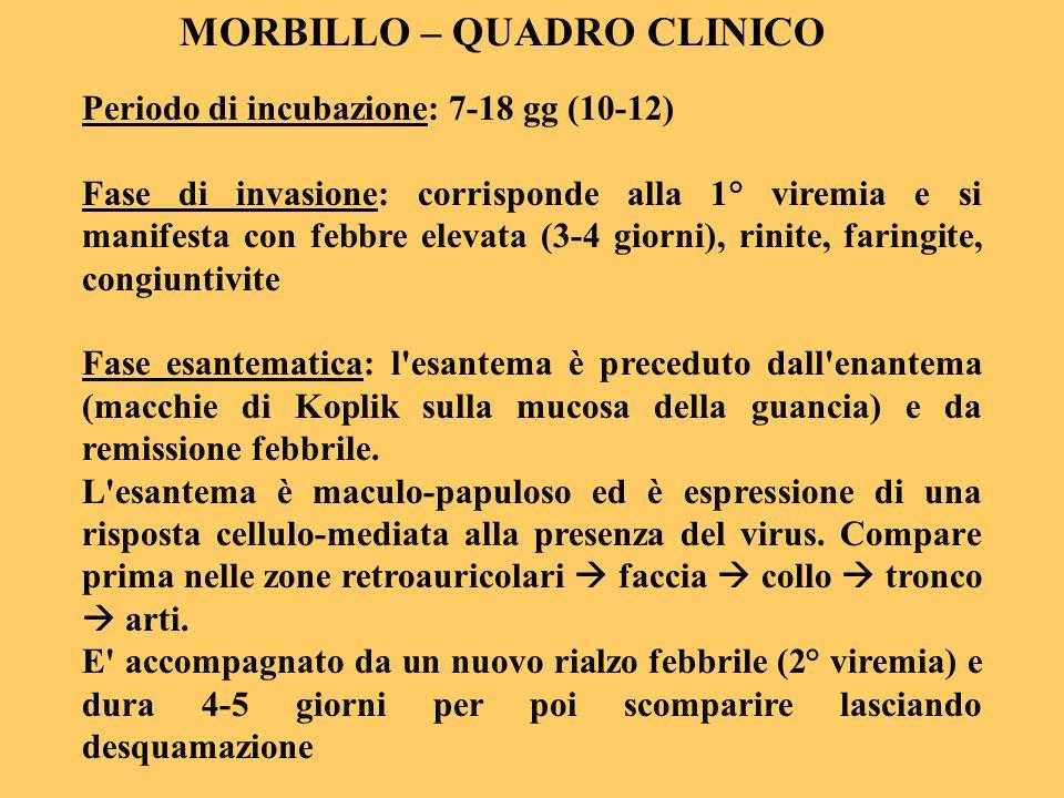 MORBILLO – QUADRO CLINICO Periodo di incubazione: 7-18 gg (10-12) Fase di invasione: corrisponde alla 1° viremia e si manifesta con febbre elevata (3-