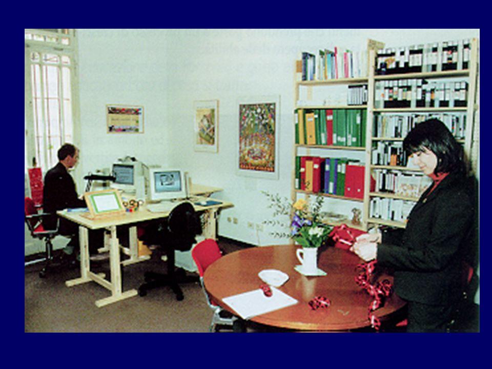Consulenza indicazioni suggerimenti informazioni Impostazioni di un percorso educativo Soluzioni esistenti