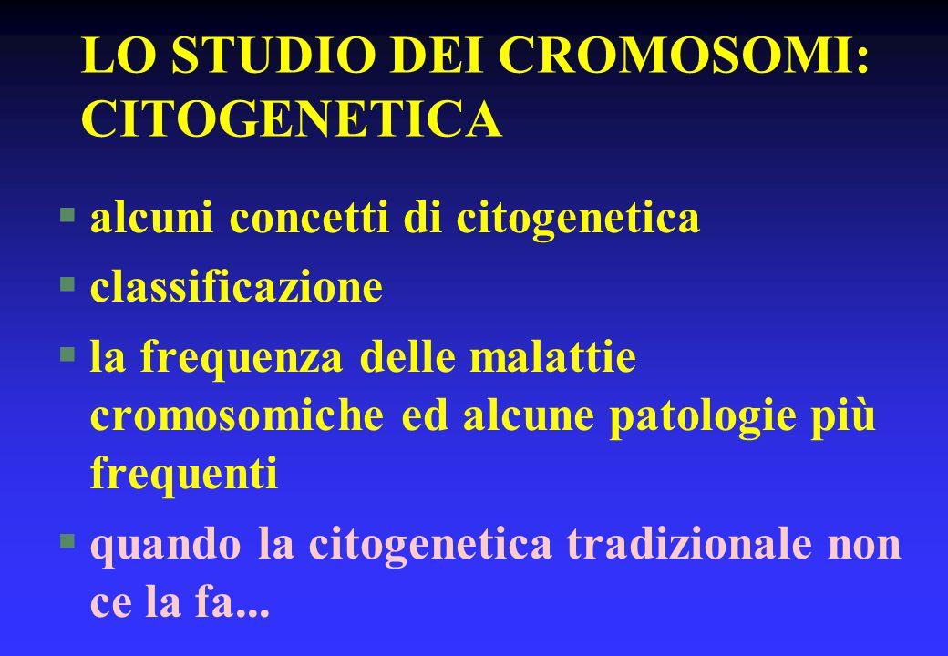 LO STUDIO DEI CROMOSOMI: CITOGENETICA §alcuni concetti di citogenetica §classificazione §la frequenza delle malattie cromosomiche ed alcune patologie